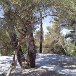 Nouvelle colocation meublée à Aix-en-Provence 13100 de 3 colocataires.